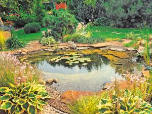 Système de bord d'étang